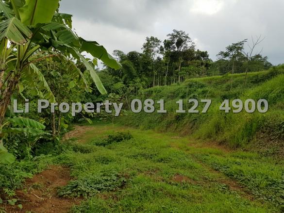 dijual-kavling-tanah-bubakan-boja-kendal-dekat-bsbvillage-liproperty-hannali-rumah123-olx-urbanindo